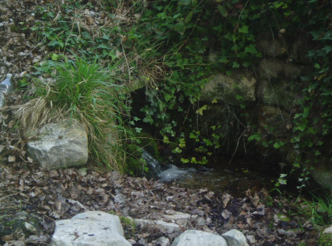 Manantial a orillas del río Duero, dentro del término de La Cistérniga